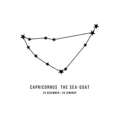 zodiac constellation capricornus vector image