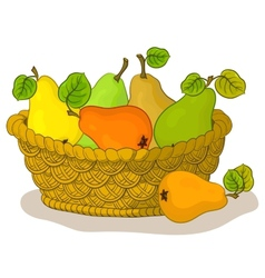 Basket with fruits pears vector