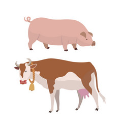 cow and pig eco farming of vector image