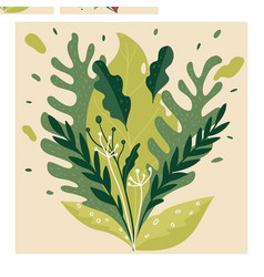 exotic greenery leaves and blooming in summer or vector image