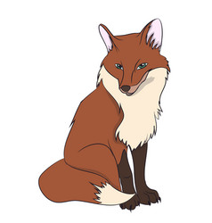 fox sitting vector image