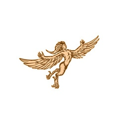 Harpy Flying Front Etching vector image