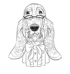 Hipster dog Basset Hound vector