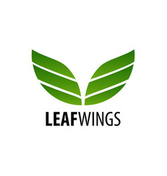 leaf wings logo concept design symbol graphic vector image