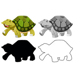 Set turtle character vector