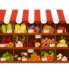 Shop or market stand display exotic fruits vector