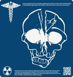 Skull X ray 4 vector