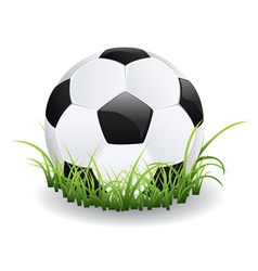 Soccer Ball with Grass vector