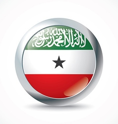 Somaliland flag button vector image vector image