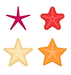 starfish set on a white background vector image