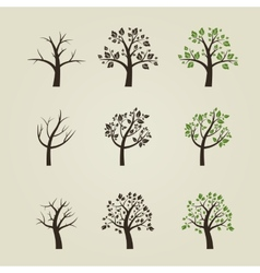 Set of different trees silhouette with roots and vector image