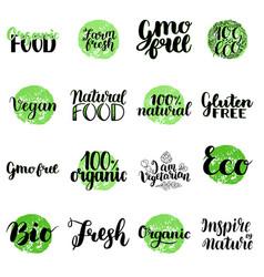 eco bio organic gluten free natural food vector image vector image