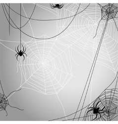 Background with spiders vector