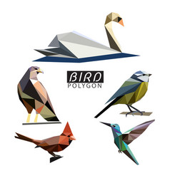 bird polygon vector image
