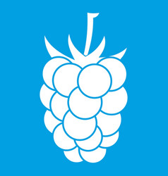 Blackberry fruit icon white vector