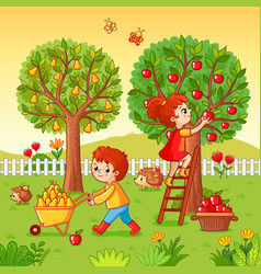 Boy and girl collect fruit harvest vector