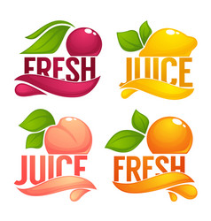 cherry lemon orange peach collection of dresh vector image