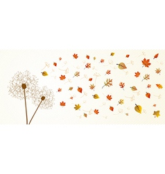 Fall season dandelion tree leaves composition vector image