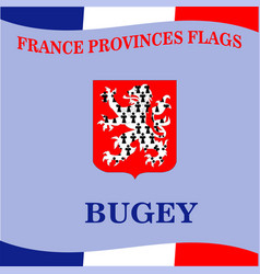 Flag of french province bugey vector