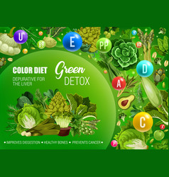 Green color food diet healthy digestion detox vector