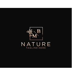 Initial bm letters beautiful floral feminine vector