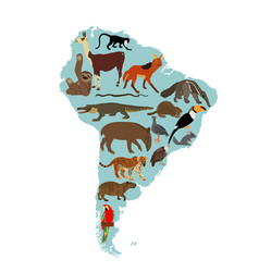 Map southern america with wild animal vector
