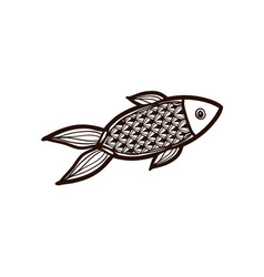 red fish isolated coloring book vector image
