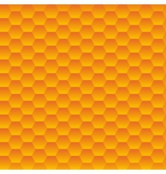 Seamless hexagonal cells texture vector image