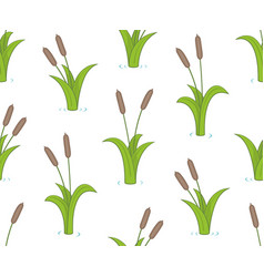 seamless pattern with bulrushes vector image