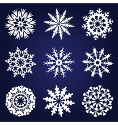 set of 9 snowflakes vector image