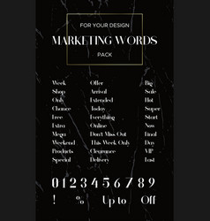set popular marketing words and all numbers vector image