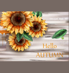 sunflowers watercolor card beautiful vector image