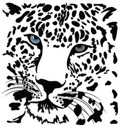 Tiger vector