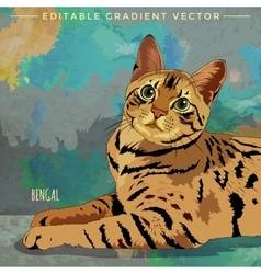 Bengal Cat vector