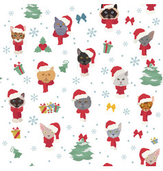 Cat portraits in santa hats and scarves christmas vector