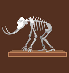 mastodon at museum mammoth skeleton exhibition vector image