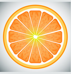 piece of orange high quality vector image