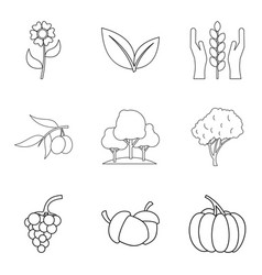 Pollination of flower icons set outline style vector