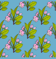 seamless pattern with apple flowers and leaves vector image