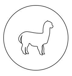Alpaca black icon outline in circle image vector