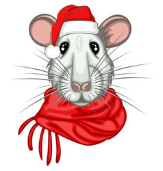 christmas rat vector image