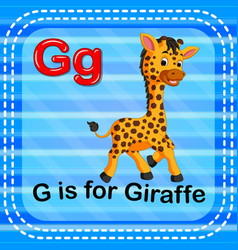 flashcard letter g is for giraffe vector image