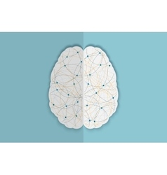 Human brain vec vector