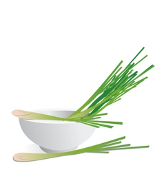 Lemon grass vector