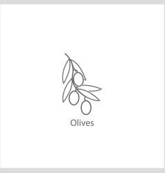 olives thin flat design on white vector image