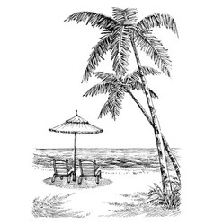 Sea view from the beach sun umbrella and chairs vector