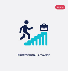 two color professional advance icon from business vector image
