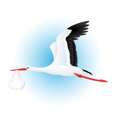 Stork Flying With Bundle vector image vector image
