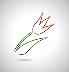Tulip drawing vector image vector image