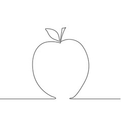 continuous line apple on white background vector image